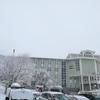 雪が降り続くスンスバルにて。