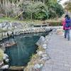 舞岡町小川アメニティ休憩所の池(神奈川県横浜)