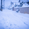 記録的大雪の記録