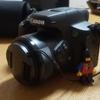 【お花をキレイに撮りたい!】超アナログ人間がカメラについて語ってみる