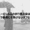 ユーロシルムの折り畳み傘はゲリラ豪雨にも負けないタフな傘