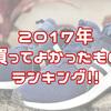 【オススメ!】2017年に買ってよかったものとかを紹介するゼ!