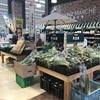 カインズホーム|使い勝手の良いオリジナル商品から地元野菜