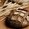 遺伝子組み換え小麦のウソ・ホント。アトピーへの影響は?