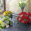 香川県の札所7カ寺で花手水「花めぐり」パート2