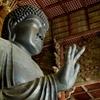 【春の奈良旅4】枝垂れ桜の咲く東大寺 大仏殿へ