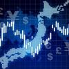 投資途中結果  himamori運用実績  国内個別株式part 2 現在の損益編