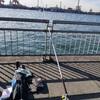 釣り日記「東扇島西公園 2回目」