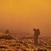 フィルム写真録 『 幻想の丘 』