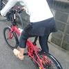 ダイエット加速か? フィットネスバイクからサイクリングへ - 妻と行くサイクリング