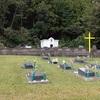 墓地の脇で楢の玉切り