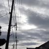 2021年1月26日(火)午後のすきま時間にZalaとゆったりライド 44.67km