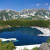 www.seasonsgreetings.tokyo は変更しました→www.masumi.tokyo