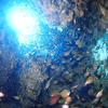 ♪秘境、糸満の海で沖縄ダイビングライセンス取得♪〜PADIオープンウォーター〜