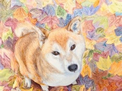 私のギャラリー〜No.11〜No.20 水彩色鉛筆 〜