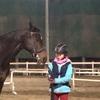 4級乗馬試験