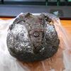 パン工房鳴門屋桃谷本店でチョコナッツとビーフシチューのパンを買った!【大阪市生野区】