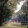 【FUJIFILM】とある休日:山下公園と横浜公園と大通り公園