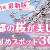 【2020年最新版】京都の桜が美しいおすすめスポット30選