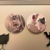 「ねこのきもち」の1年継続特典が届いたよ! うちの猫オリジナルグッズ!