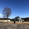 「栃木県なかがわ水遊園」でピラルクー見てピラルクーカレー食べてきた。