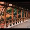 【紅葉】京都・東福寺&臥雲橋 自分的紅葉穴場スポットを発掘一人旅