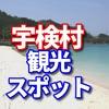 宇検村のふるさと納税は奄美の島ニンニクオイル、うけん車エビオイル、奄美の酢しょうゆ島ニンニク3本セットの一択だったので観光スポットのビーチとカフェをシェア