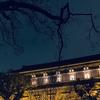 狩野永徳 聚光院花鳥図襖 (東京国立博物館「桃山」展)