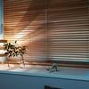 マンションの中部屋は風通しが悪い!木製ブラインドが寝室の窓に最適な理由