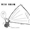 【大河ドラマ】『麒麟がくる』放漫記-第25回羽運ぶ蟻
