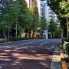坂道探訪 音羽の谷に下りる坂道(3)