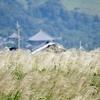 市街地のただ中にある大草原。ここはどこ?わたしはなに?という気分にさせる平城宮跡とはなにごとぞ!