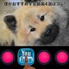 ユーチューブで知識を得る、おすすめ動画4選はコレ!