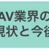 AVAN代表川奈まり子さんインタビューからみえてきたAV業界の現状と今後(後編)