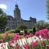 チューリップが綺麗な春のケベックシティ旧市街(Vieux Québec)と戦場公園(Plaines d'Abraham)へ行ってきた!