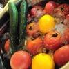 グローバルライフ株式会社 | Global Life 暑い時にこそ夏野菜