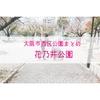 【公園情報】花乃井公園(最寄り阿波座):大阪市西区公園まとめ