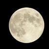 月「何故私は地球の近くにいるのに生物が存在しないんだ?」
