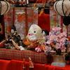 七尾の能登食祭市場に行ったら雛人形がいくつもあった