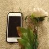 #52 【速報】独身貴族、携帯を替える