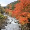 飛騨の秋景色 【小鳥川】