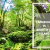 GoProが大活躍する島。神秘的な屋久島!