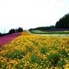 富良野観光 ワタシの勝手にランキング~2017夏