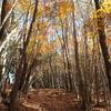 【登山】紅葉を求めて四国のお山をプラプラと