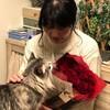 フラワーバレンタイン企画、今年もお花を贈りました