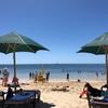 マタニティ旅行中のハプニングと感想 in Cairns