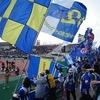 今週の漢方相談会・2009年4月6日とモンテディオ山形リーグ戦ホーム初勝利レポート
