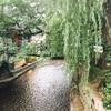 京都に移住した感想!一人暮らしの家賃や生活費などの内約!