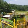 【高梁市】ハイランド公園は岡山最大級の遊具がある公園⁉️開放的な自然の中の巨大遊具に驚き❗️