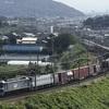 三河大塚の俯瞰で朝の貨物列車を